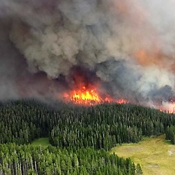 Western Wildfires Put Water Systems at Risk of Pollution