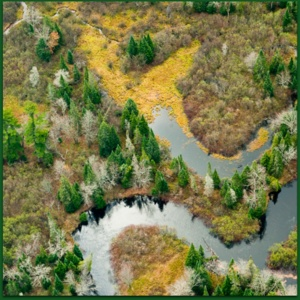 Mending the Meander with the Great Lakes Restoration Initiative