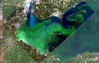 Less Algae in Lake Erie by 2015