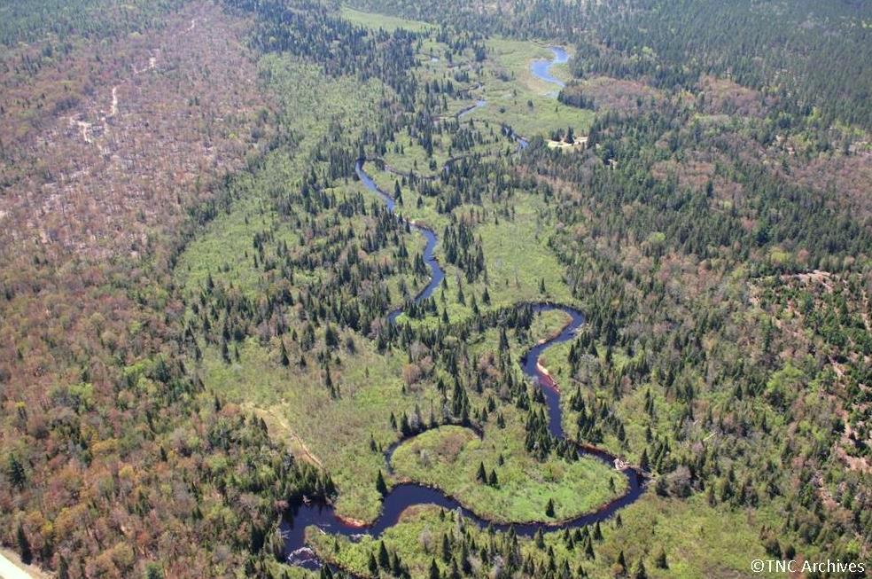Autre vue de la rivière. Photo : archives de The Nature Conservancy.