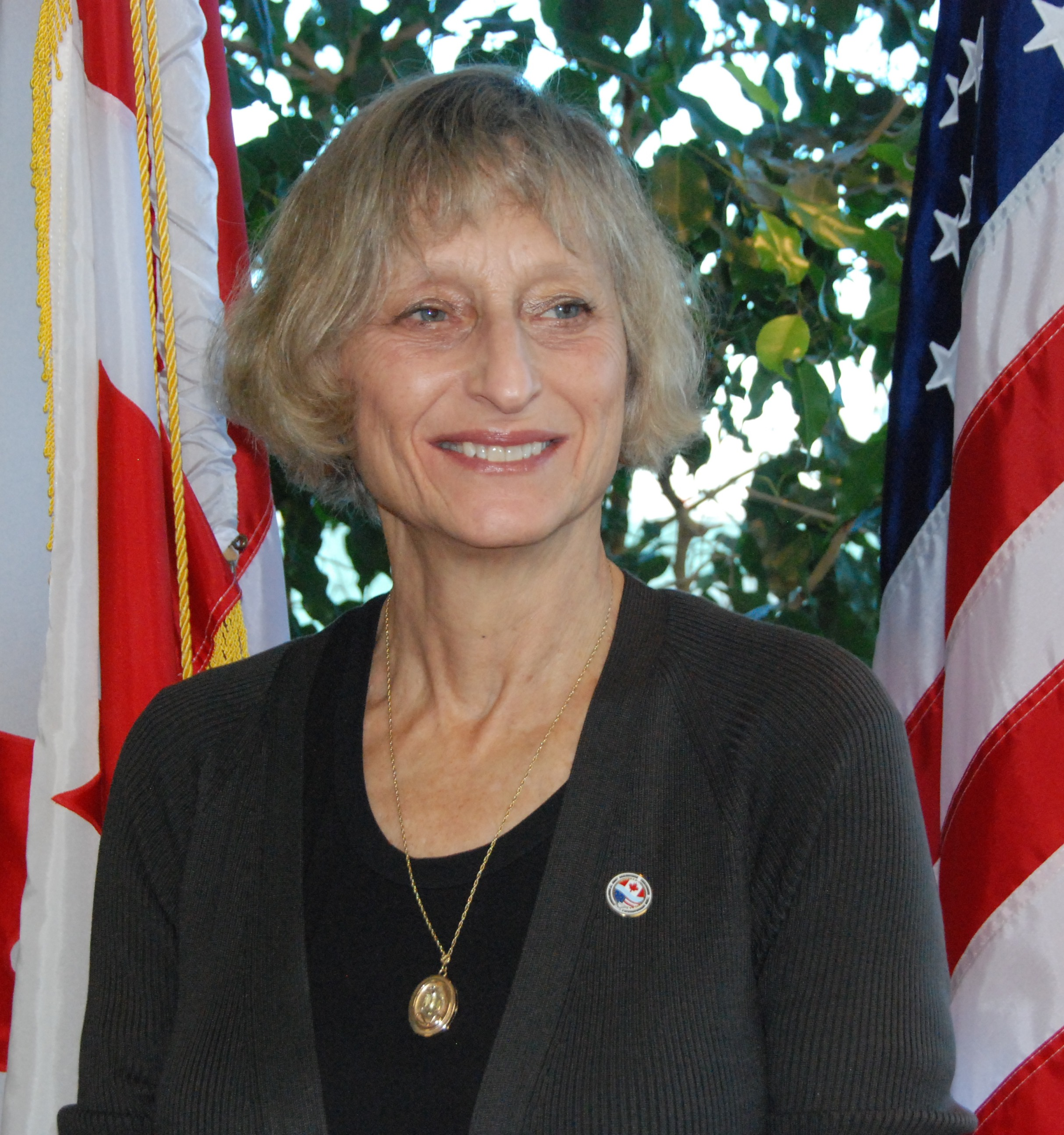 Lana Pollack, Chair
