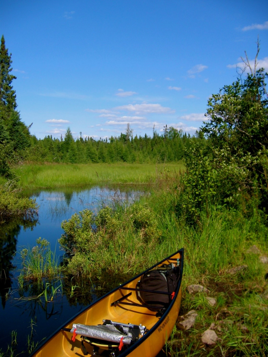 A canoe on the bank at the Boundary Waters Canoe Area Wilderness. The area is just one region in Minnesota and Ontario where officials are working hard to keep invasive species out of the Rainy-Namakan system. Credit: US Forest Service