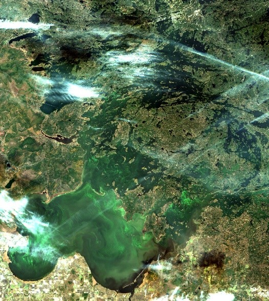 European Space Agency Sentinel-2A satellite image, capturing algal blooms on Lake of the Woods on Oct. 20, 2017. Credit: Caren Binding, Environment and Climate Change Canada