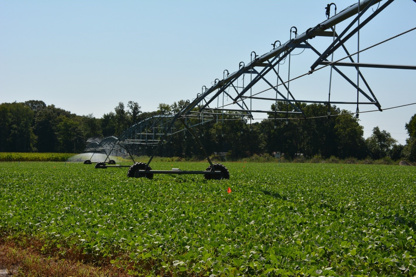 Exemple d'irrigation d'un champ agricole. Photo : Delaware Cooperative Extension