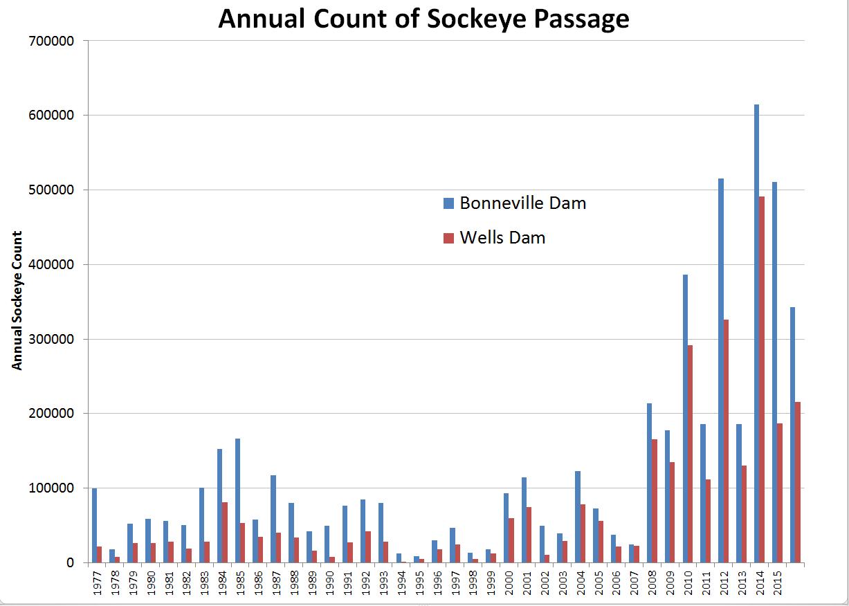 Graphique illustrant les dénombrements annuels de saumons rouges aux barrages Bonneville et Wells. Source : Columbia Basin Research