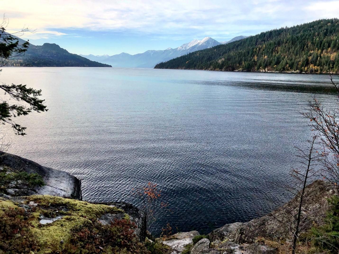 Le niveau d'eau du lac Kootenay est partiellement régularisé par des barrages en amont et en aval, y compris le barrage Corra Linn. Source : D. Taylor in Idaho.