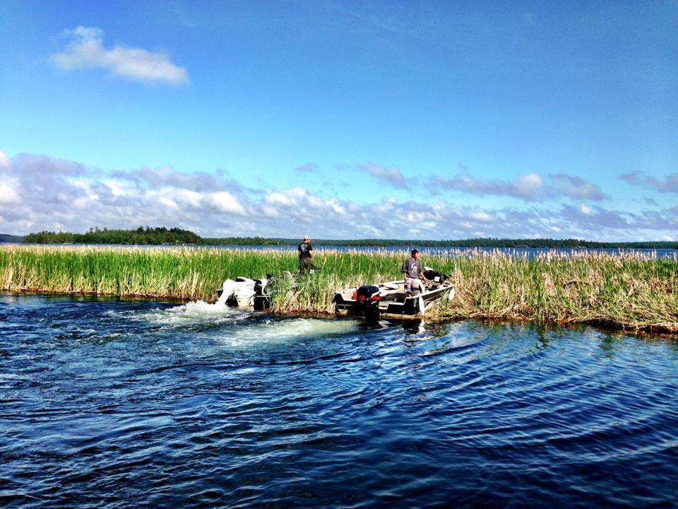 Deux plaisanciers se dirigent près des massettes dans le lac à la Pluie. Crédit : Eric Olson