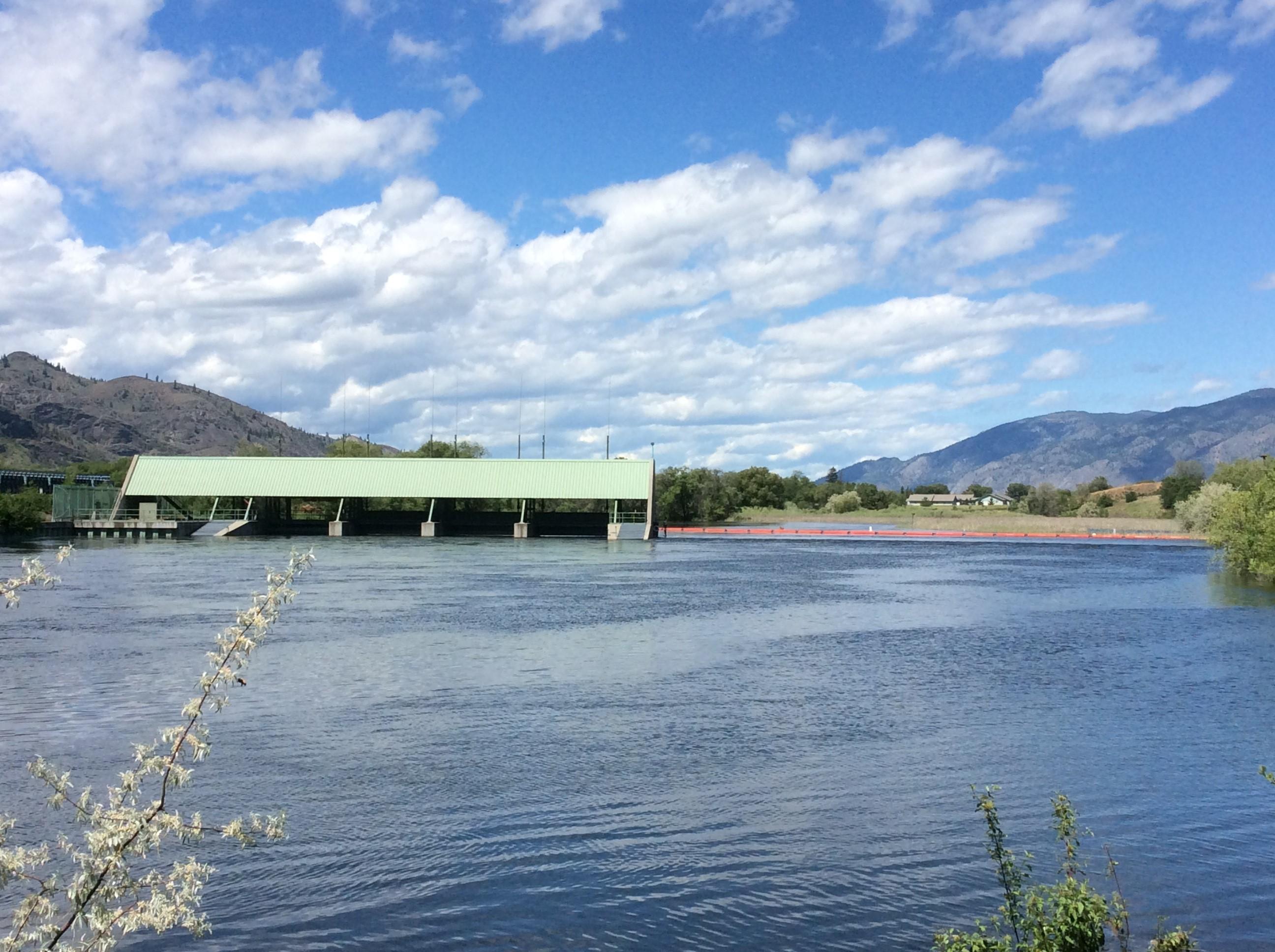 Le déversoir du barrage Zosel a été inondé durant les crues du système du lac Osoyoos en mai et en juin, et a été recouvert par les eaux. Mention de source : Brian Symonds