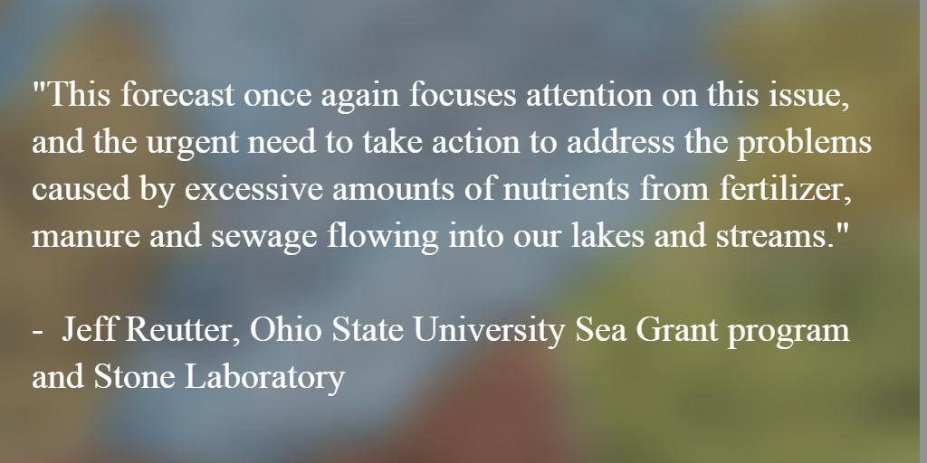 Jeff Reutter on algae forecast